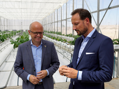 Crown Prince Haakon with Norwegian Minster of Climate and Environment, Mr Vidar Helgesen, who was also in attendance at the opening. Photo: Anders Nybø / Sahara Forest Project