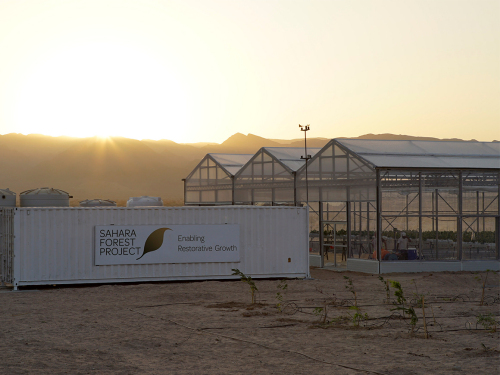 The new facility is the size of four football pitches. Photo: Anders Nybø / Sahara Forest Project